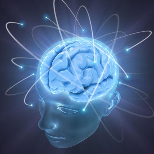 concussion services