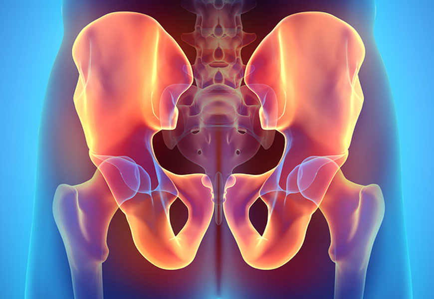 pelvis and hip conditions